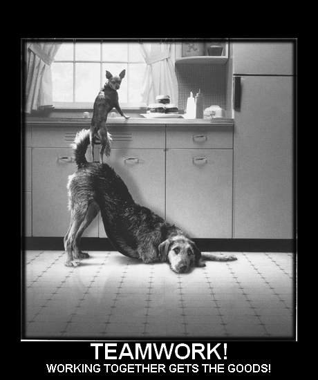 BLOG - Funny Inspirational Teamwork Quotes